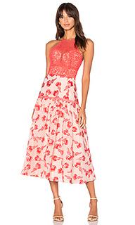 Floral jacquard midi dress - Rebecca Taylor