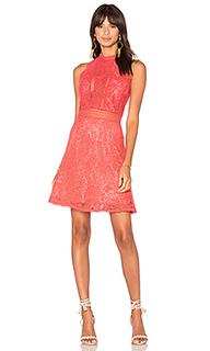 Кружевное платье arella - Rebecca Taylor