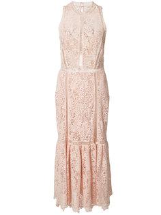 sleeveless lace dress  Rebecca Taylor