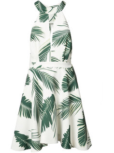 leaf print mini-dress  C/Meo