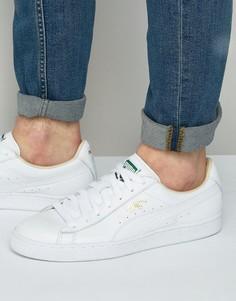 Классические кроссовки для баскетбола Puma 35436717 - Белый