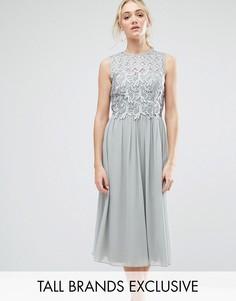 Приталенное платье-премиум миди с кружевным топом Little Mistress Tall - Серый