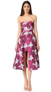 Платье Caine Black Halo