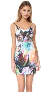 Мини-платье Jevette Black Halo