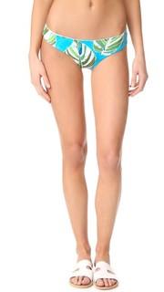Плавки бикини Sumatra Pixie с пальмами L*Space