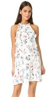 Прямое платье Elly с оборками BB Dakota