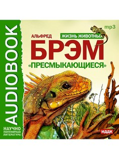 Аудиокниги ИДДК