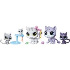 Мини-набор зверюшек, Littlest Pet Shop Hasbro