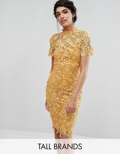 Платье-футляр с премиум-кружевом по всей поверхности Paper Dolls Tall - Желтый