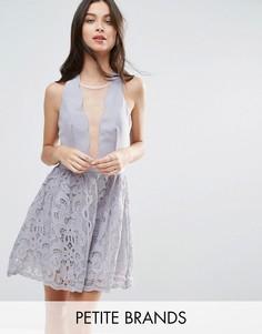 Короткое приталенное платье с ажурной юбкой и фигурным краем Little Mistress Petite - Серый