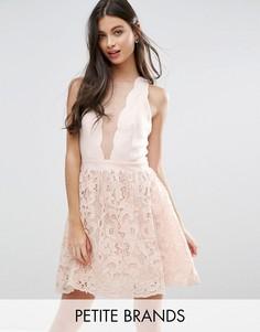 Короткое приталенное платье с ажурной юбкой и фигурным краем Little Mistress Petite - Кремовый