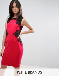 Платье-футляр с кружевной отделкой Little Mistress Petite - Красный