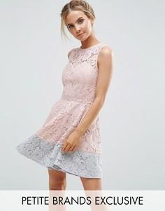 Короткое приталенное кружевное платье для выпускного с контрастным краем Little Mistress Petite - Розовый