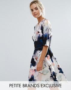 Короткое приталенное платье для выпускного с цветочным принтом Little Mistress Petite - Мульти
