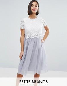 Короткое приталенное платье с кружевным топом и юбкой из тюля Boohoo Petite - Серый