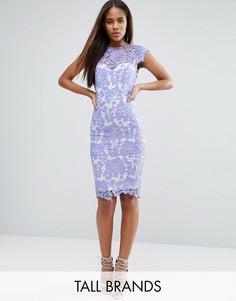 Кружевное платье-футляр Paper Dolls Tall - Синий