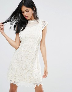 Кружевное платье мини Little Mistress - Кремовый