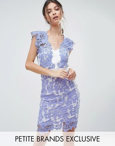 Кружевное платье-футляр Paper Dolls Petite - Синий