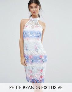 Кружевное платье-футляр с высокой горловиной и эффектом омбре Paper Dolls Petite - Мульти