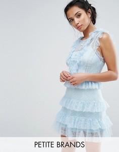 Платье с оборками из сетки с цветочным узором и в горошек True Decadence Petite - Синий