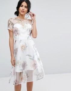 Платье миди из органзы с крупным цветочным принтом Chi Chi London - Мульти