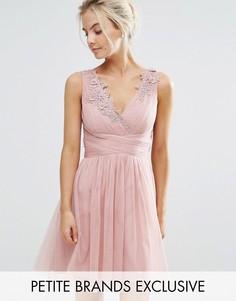 Платье мини из тюля для выпускного с кружевной аппликацией Little Mistress Petite - Розовый