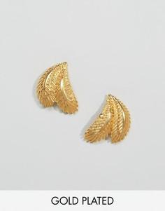 Серьги в виде пальмовых листьев Ottoman Hands - Золотой