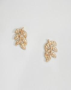 Серьги-гвоздики в виде листьев DesignB London - Золотой