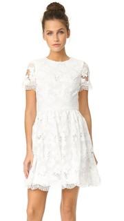Нарядное платье Karen с округлым вырезом Alice + Olivia
