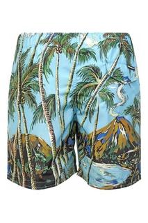 Пляжные шорты Dolce&Gabbana Children