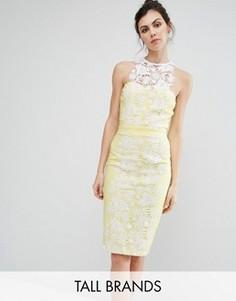 Платье-футляр с кружевными вставками Paper Dolls Tall - Желтый