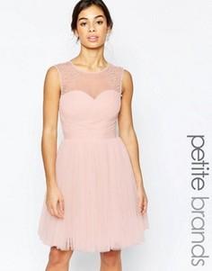Платье для выпускного с декоративной отделкой Little Mistress Petite - Розовый