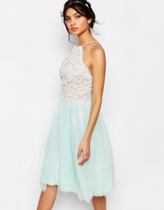 Кружевное платье с халтером и тюлевой юбкой Jarlo Edie - Зеленый