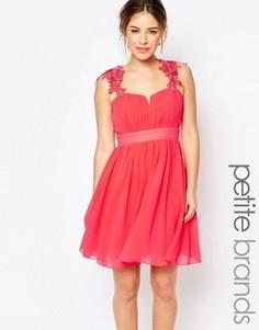 Короткое приталенное платье с кружевной отделкой Little Mistress Petite - Розовый