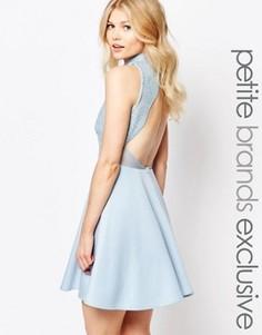 Короткое приталенное платье с открытой спиной и отделкой пайетками в стиле барокко John Zack Petite - Синий