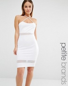 Облегающее платье с сетчатыми вставками и бретельками John Zack Petite - Белый