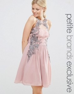 Короткое приталенное платье с кружевным принтом Little Mistress Petite - Розовый