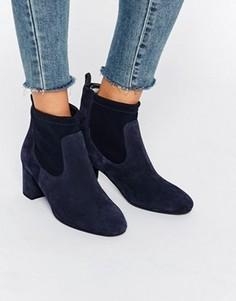 Темно-синие замшевые сапоги на каблуке Faith Briony - Темно-синий