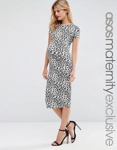 Облегающее платье для беременных с леопардовым принтом ASOS Maternity - Мульти