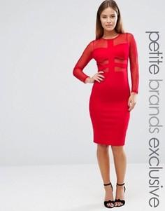 Облегающее платье с длинными рукавами и сетчатой вставкой John Zack Petite - Красный