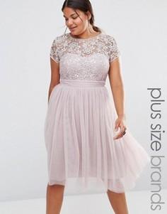 Платье миди с кружевным топом и юбкой из тюли Little Mistress Plus - Розовый