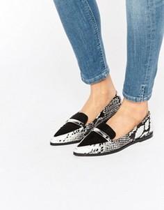 Туфли на плоской подошве с острым носом ASOS MARSHA - Мульти