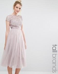 Платье миди с короткими рукавами и кружевным топом Little Mistress Tall - Розовый