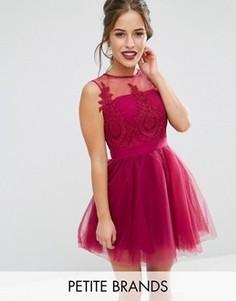 Платье мини для выпускного с пышной юбкой и вышивкой Chi Chi London Petite - Розовый