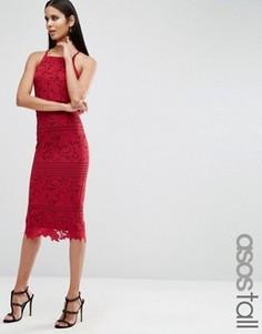 Платье миди из цветочного кружева с фигурными краями ASOS TALL - Красный