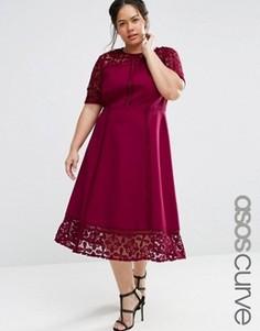 Пышное платье миди с кружевной вставкой ASOS CURVE PREMIUM - Красный