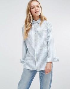 Рубашка в полоску Rollas - Синий