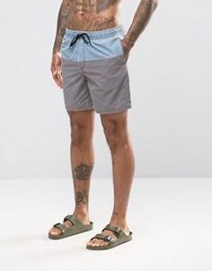 Серые шорты для плавания средней длины с голубой вставкой ASOS - Серый