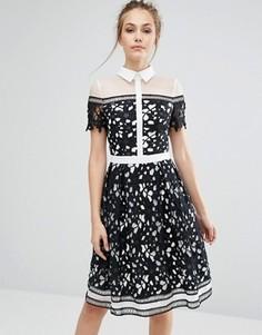 Кружевное премиум-платье со вставками и контрастным воротником Chi Chi London - Черный
