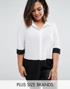 Рубашка колор блок New Look Plus - Черный